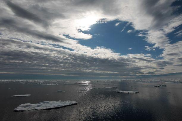 Экспедиция в Арктику на парусных яхтах вышла из Архангельска
